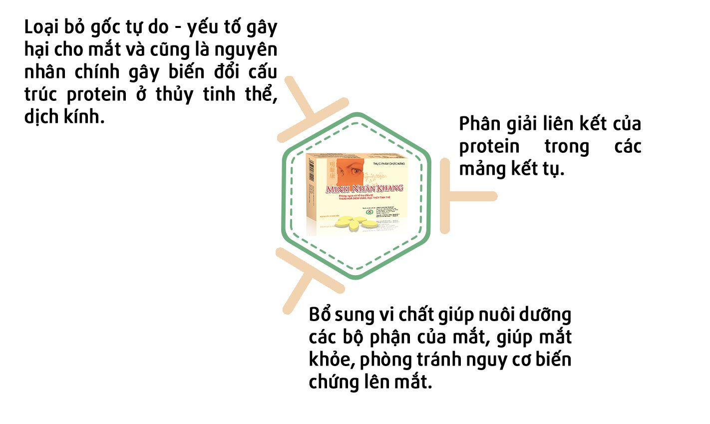 Minh Nhãn Khang giúp làm giảm hiện tượng ruồi bay trước mắt